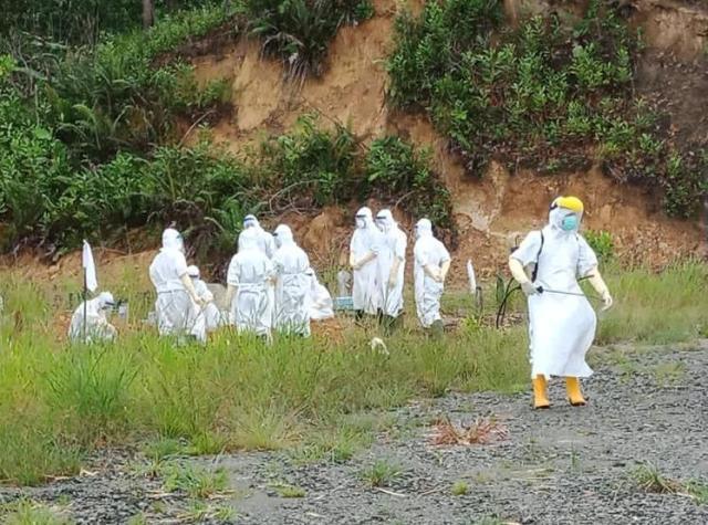 Dengan memakai APD lengkap, tim relawan yang merupakan ASN menguburkan jenazah almarmahumah di pemakaman khusus covid-19 di Kelurahan Juata Laut, Kamis (12/11/2020) (foto: istimewa).
