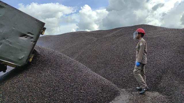 Palm kernel asal Berau, Kaltim, siap di ekspor ke Malaysia. (foto: Balai Karantina Pertanian Tarakan)